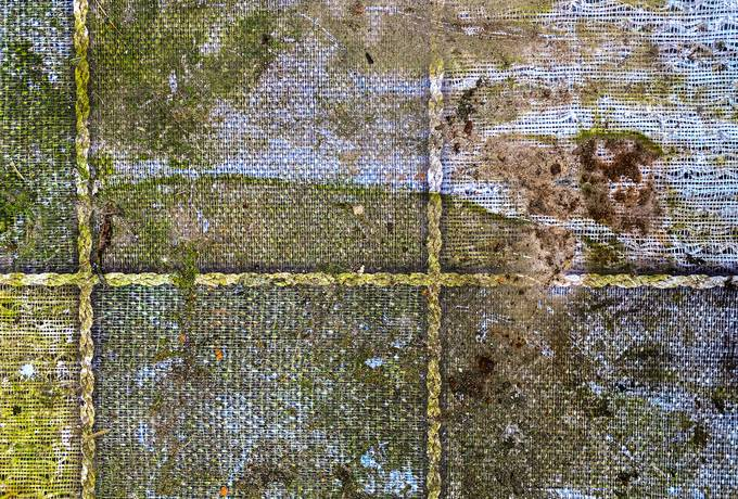 free Dirty Green Abstract texture