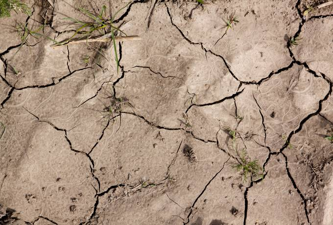 cracked ground soil