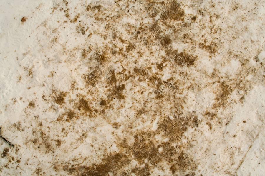 frozen snow sand free texture