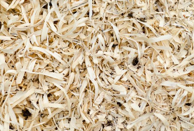 free Scobs Sawdust texture