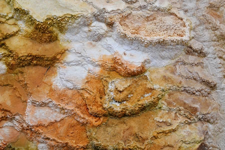 Orange Stone Mineral free texture