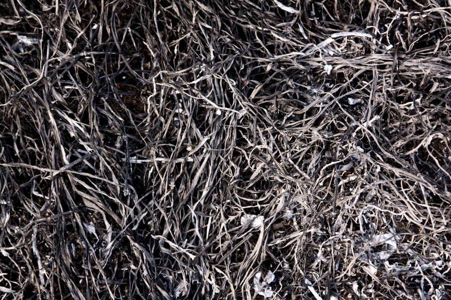 ash ground burnt free texture