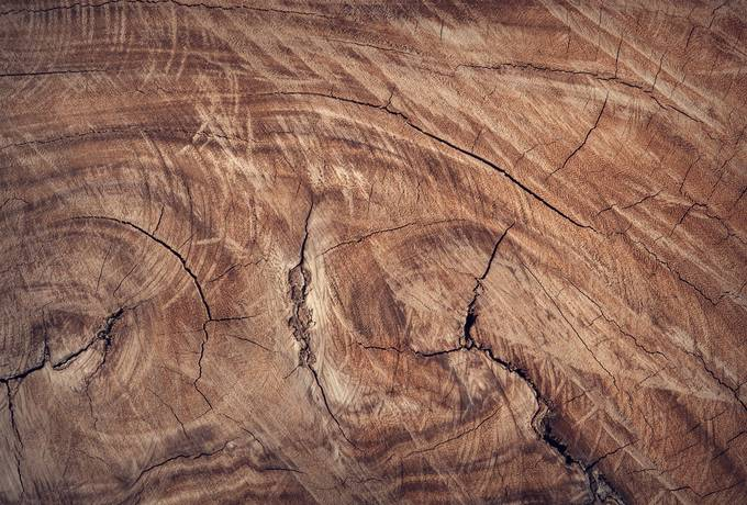 free Close up of Brown Wood texture