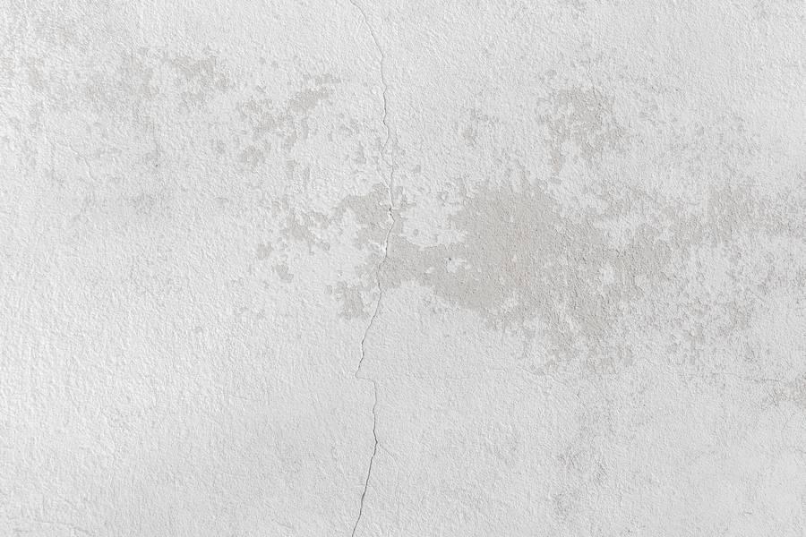 Exterior White Wall free texture