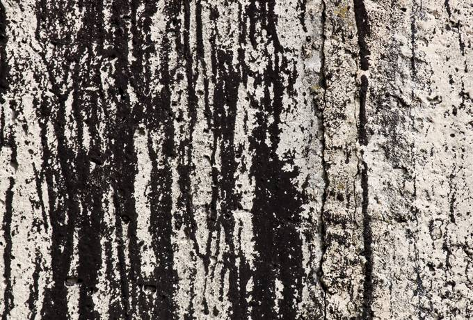 free tar grunge wall texture