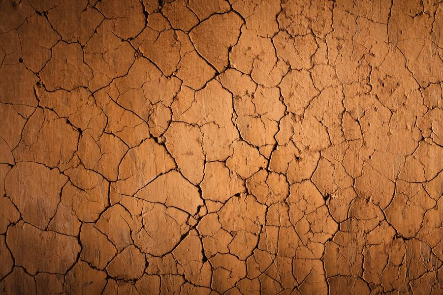 Cracked Clay Soil free texture
