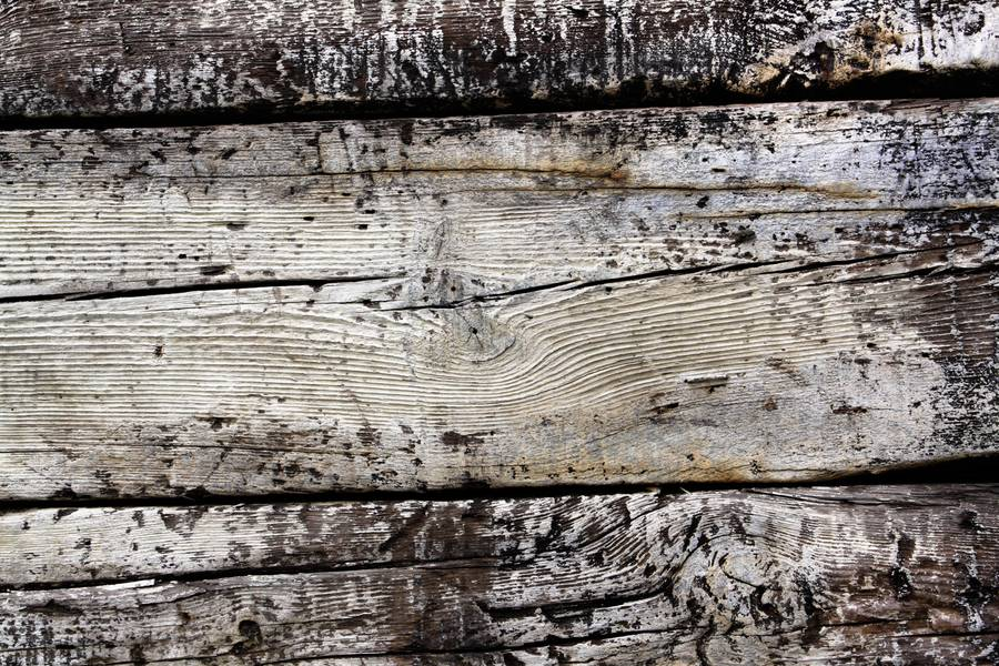 wood grunge paint free texture