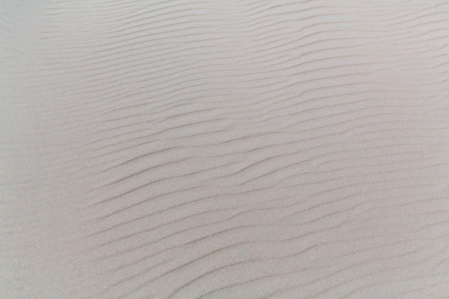 Wrinkled Sand free texture