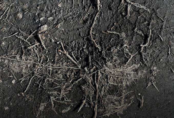 free black ground dirt texture