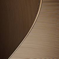 Abstract Lines Architecture Detail