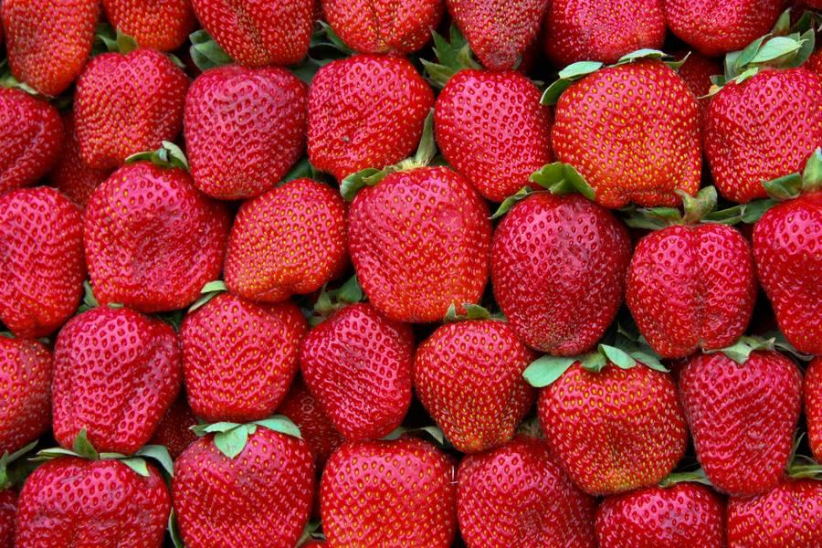 strawberries fruits nature free texture
