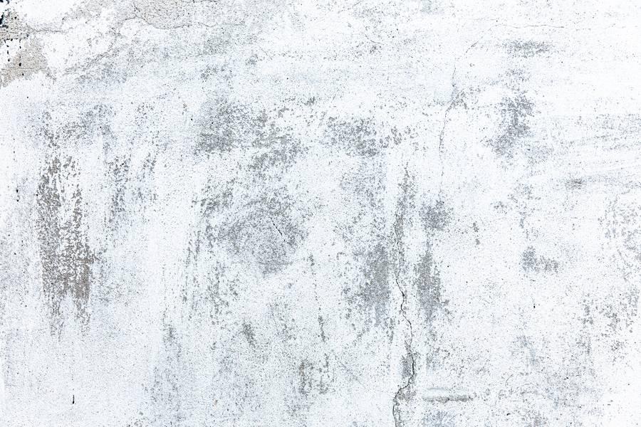 White Concrete Wall free texture