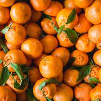 Fresh Clementines with Leaves
