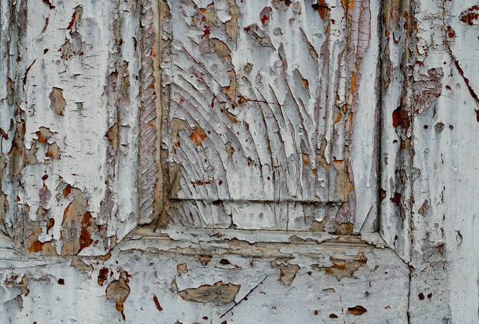 free old wood door texture