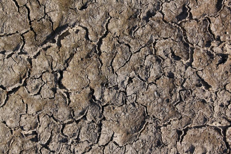 ground cracked mud free texture
